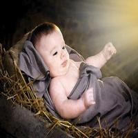 Nascido de Mulher